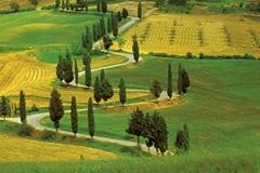 meravigliosa-toscana-colline